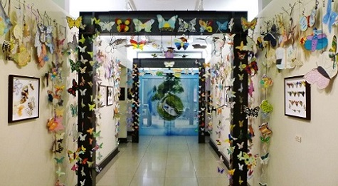 the_butterfly_project_inside_the_houston_holocaust_museum6