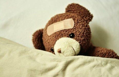 teddy-3183563_640