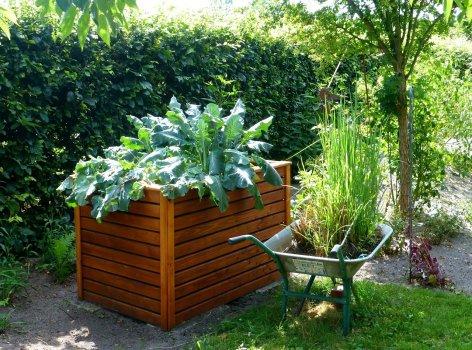 garden-883095_1280